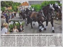 Bericht Hochzeitskutsche Wirmighausen