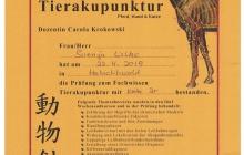 Prüfung zum Fachwissen Tierakupunktur
