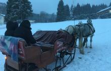 Fahrt mit dem Pferdeschlitten in Willingen