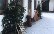 Schlittenfahren in Willingen - Schnee, Rodeln, Ski