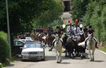 Hochzeitskutsche und Pferde zur Hochzeit