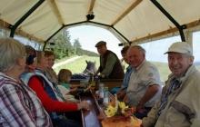 Christbaum schlagen in Willingen/Sauerland