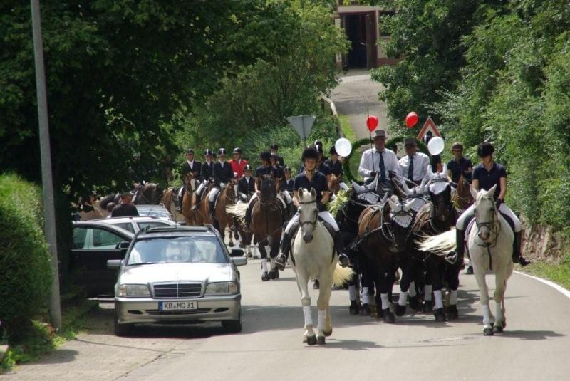 Hochzeitskutsche von Sechsspänner zum Zollhaus gezogen  Wilke Mühle ...